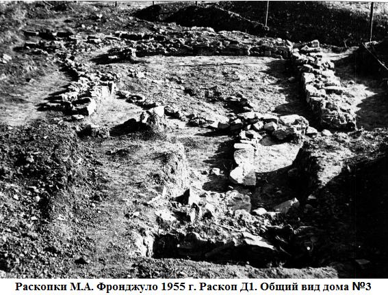 раскопки 1955.png